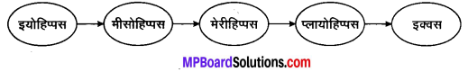 MP Board Class 10th Science Solutions Chapter 9 अनुवांशिकता एवं जैव विकास 3
