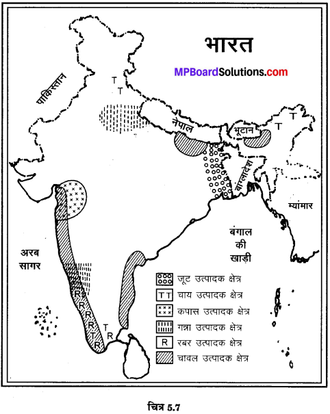 MP Board Class 10th Social Science Solutions Chapter 5 मानचित्र पठन एवं अंकन 11