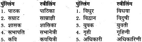 MP Board Class 11 General Hindi व्याकरण अशुद्ध गद्यांश की भाषा का परिमार्जन img-1
