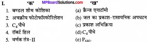 MP Board Class 11th Biology Solutions Chapter 13 उच्च पादपों में प्रकाश-संश्लेषण - 1