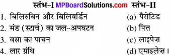 MP Board Class 11th Biology Solutions Chapter 16 पाचन एवं अवशोषण - 2