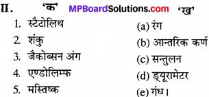 MP Board Class 11th Biology Solutions Chapter 21 तंत्रिकीय नियंत्रण एवं समन्वय - 2