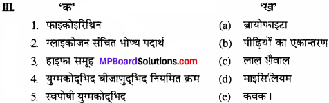 MP Board Class 11th Biology Solutions Chapter 3 वनस्पति जगत - 7