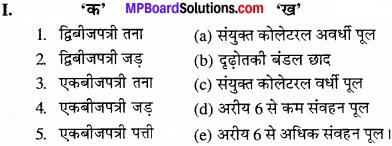 MP Board Class 11th Biology Solutions Chapter 6 पुष्पी पादपों का शारीर - 14