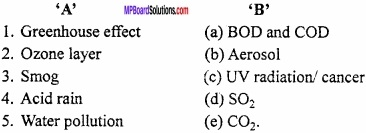 MP Board Class 11th Chemistry Important Questions Chapter 14 Environmental Chemistry img 1