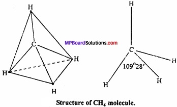 MP Board Class 11th Chemistry Important Questions Chapter 4 Chemical Bonding and Molecular Structure img 23