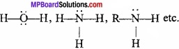 MP Board Class 11th Chemistry Important Questions Chapter 7 Equilibrium img 4