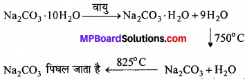 MP Board Class 11th Chemistry Solutions Chapter 10 s-ब्लॉक तत्त्व - 29