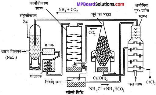 MP Board Class 11th Chemistry Solutions Chapter 10 s-ब्लॉक तत्त्व - 42