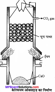 MP Board Class 11th Chemistry Solutions Chapter 10 s-ब्लॉक तत्त्व - 51