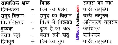 MP Board Class 11th Hindi Makrand Solutions Chapter 11 हिम-प्रलय img-2