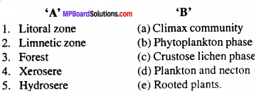MP Board Class 12th Biology Important Questions Chapter 14 Ecosystem 1