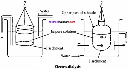 MP Board Class 12th Chemistry Important Questions Chapter 5 Surface Chemistry 7