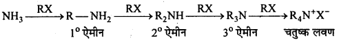 MP Board Class 12th Chemistry Solutions Chapter 13 ऐमीन - 103