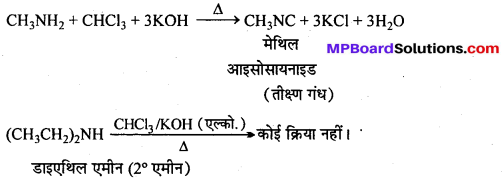 MP Board Class 12th Chemistry Solutions Chapter 13 ऐमीन - 11