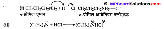 MP Board Class 12th Chemistry Solutions Chapter 13 ऐमीन - 6