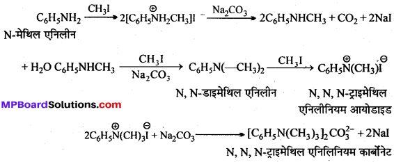 MP Board Class 12th Chemistry Solutions Chapter 13 ऐमीन - 7