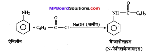MP Board Class 12th Chemistry Solutions Chapter 13 ऐमीन - 8