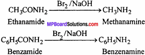 MP Board Class 12th Chemistry Solutions Chapter 13 Amines - 23