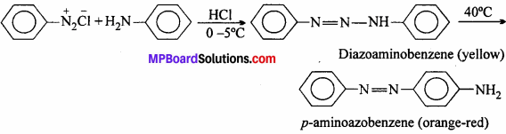 MP Board Class 12th Chemistry Solutions Chapter 13 Amines - 24