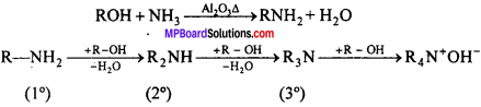 MP Board Class 12th Chemistry Solutions Chapter 13 Amines - 25