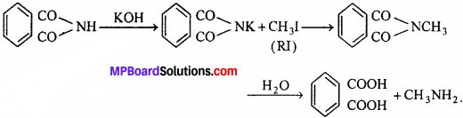 MP Board Class 12th Chemistry Solutions Chapter 13 Amines - 27