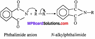 MP Board Class 12th Chemistry Solutions Chapter 13 Amines - 30-4