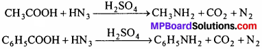 MP Board Class 12th Chemistry Solutions Chapter 13 Amines - 33