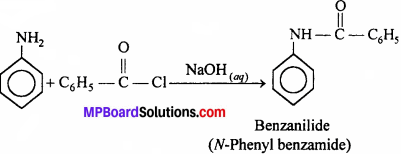 MP Board Class 12th Chemistry Solutions Chapter 13 Amines - 6
