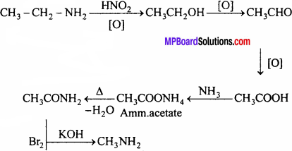 MP Board Class 12th Chemistry Solutions Chapter 13 Amines - 65