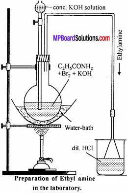 MP Board Class 12th Chemistry Solutions Chapter 13 Amines - 91