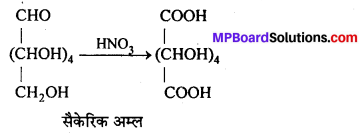 MP Board Class 12th Chemistry Solutions Chapter 14 जैव-अणु - 10