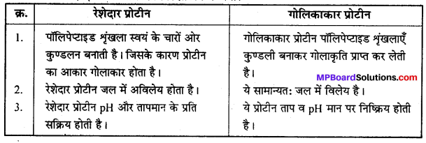 MP Board Class 12th Chemistry Solutions Chapter 14 जैव-अणु - 12