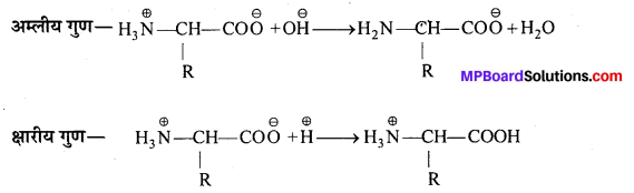 MP Board Class 12th Chemistry Solutions Chapter 14 जैव-अणु - 14