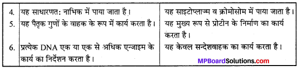 MP Board Class 12th Chemistry Solutions Chapter 14 जैव-अणु - 17