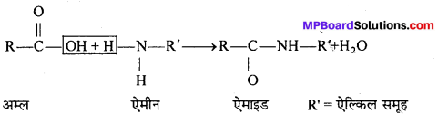 MP Board Class 12th Chemistry Solutions Chapter 14 जैव-अणु - 19
