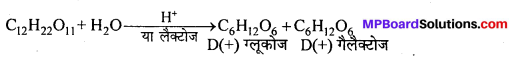 MP Board Class 12th Chemistry Solutions Chapter 14 जैव-अणु - 2