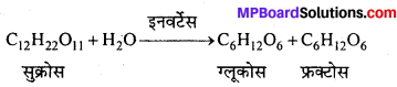 MP Board Class 12th Chemistry Solutions Chapter 14 जैव-अणु - 32