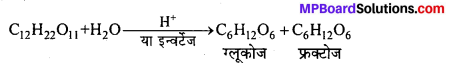 MP Board Class 12th Chemistry Solutions Chapter 14 जैव-अणु - 6