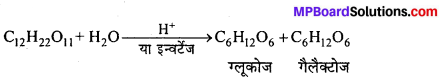 MP Board Class 12th Chemistry Solutions Chapter 14 जैव-अणु - 7