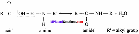 MP Board Class 12th Chemistry Solutions Chapter 14 Biomolecules - 19