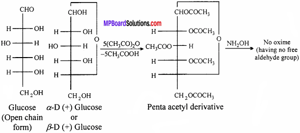 MP Board Class 12th Chemistry Solutions Chapter 14 Biomolecules - 2