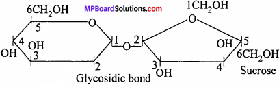 MP Board Class 12th Chemistry Solutions Chapter 14 Biomolecules - 23