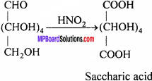 MP Board Class 12th Chemistry Solutions Chapter 14 Biomolecules - 9