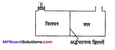 MP Board Class 12th Chemistry Solutions Chapter 2 विलयन - 50