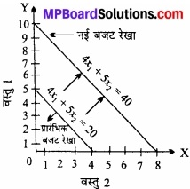 MP Board Class 12th Economics Important Questions Unit 2 उपभोक्ता व्यवहार एवं माँग img 6