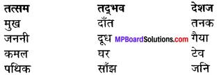 Sur Ke Balkrishna Summary In Hindi MP Board