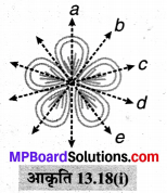 MP Board Class 6th Maths Solutions Chapter 13 सममिति Ex 13.2 image 9