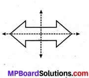 MP Board Class 6th Maths Solutions Chapter 13 सममिति Ex 13.3 image 6