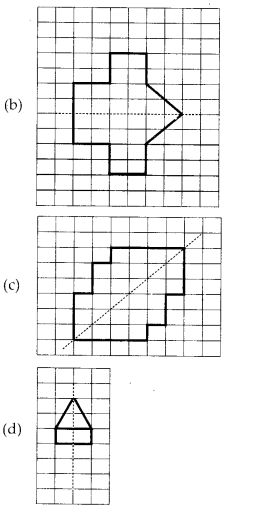 MP Board Class 6th Maths Solutions Chapter 13 Symmetry Ex 13.1 10